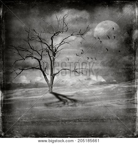 Flock of birds and lone dead leafless tree in desert landscape. Black and white digital photo manipulation. Climate change, drought and global warming concepts.