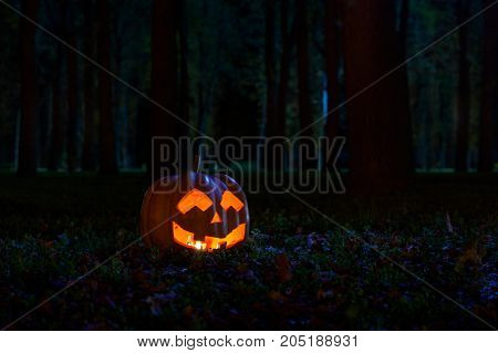 Halloween Pumpkin in the park at night