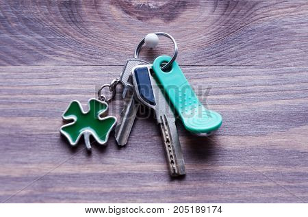 Set Of Metal And Magnetic Keys With A Keyring-shaped Clover Leaf In Green On A Dark Wooden Backgroun