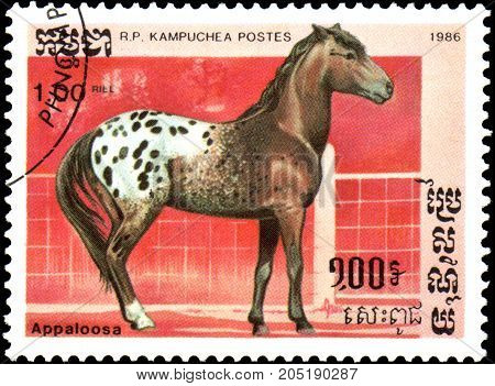 R.P. KAMPUCHEA - CIRCA 1986: A stamp printed in R.P.Kampuchea shows a Appaloosa horse, series breed of horses