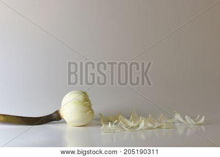 White Lotus Petals Isolated On White Background