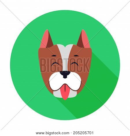 Funny muzzle of Staffordshire Terrier flat and theme on green circle background. Happy hound shows red tongue, short ears planted high. Vector illustration of dogs breed deduced in United States.
