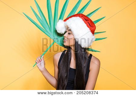 Woman In Santa Hat With Palm Leaf
