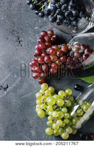 Variety Of Grapes