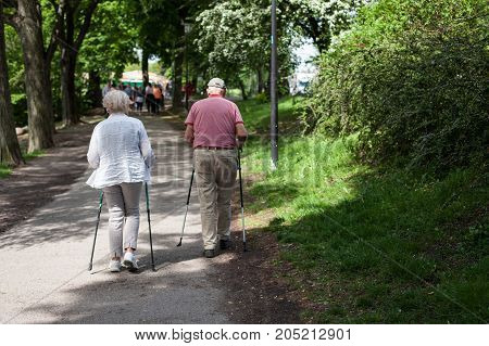 Powerful happy elderly people are walking with hiking sticks, canes, running early in the park Stockholm, Sweden