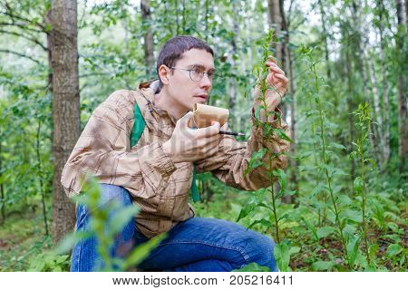 Image of man with notebook and pencil studying plant in forest in summer afternoon
