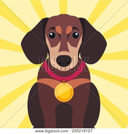 Brown dachshund close-up with gold medal on neck. Sitting German badger-dog with golden award on red ribbon isolated on striped yellow background. Vector illustration of dogs cartoon style design