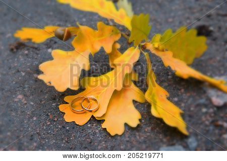 Two Golden Wedding Are The Leaves Of The Tree