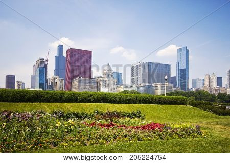 Chicago downtown skyline view with flowerbed in Grant Park on the foreground on a sunny summer day.