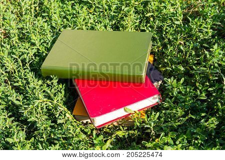 Stack Of Old Books On Green Grass
