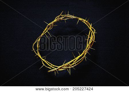 Yellow Crown Of Thorns On A Black Background Top View