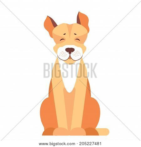 Happy cute pit bull sitting with raised ears flat vector isolated on white background. Lovely purebred dog illustration for animal friends and companions concepts, pet shop ad