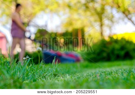 girl mows with a lawn-mower a grass on a lawn care of a lawn