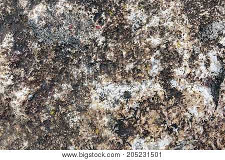 Stone texture background, marble texture in nature.
