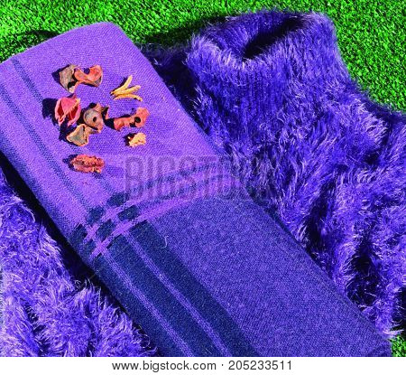 Violet in autumn. Warm clothing to withstand the autumn cold.