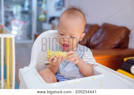 Smiling Cute Little asian toddler baby boy holding and eating sweet corn at home funny kid sitting on high chair eating food concept of health care & healthy child nutrition