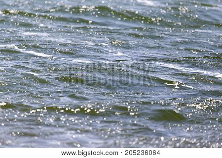 background surface of the water . In a park in the nature