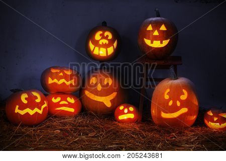 the funny Halloween pumpkin on dark background
