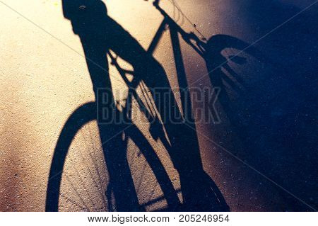 shadow of a bicycle and a bicyclist on the asphalt summer