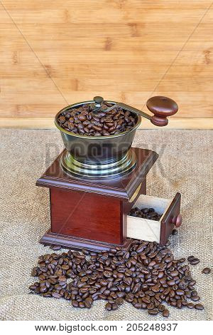 Coffee grinder full of roasted coffee beans - wooden background