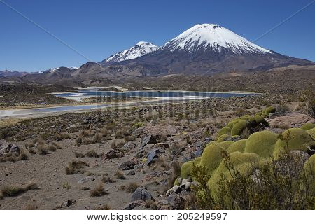 Volcanoes Parinacota and Pomerape in Lauca National Park high on the Altiplano of northern Chile. In the foreground lakes known as Lagunas de Cotacani