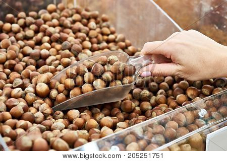 Buyer With Scoop Takes Hazelnuts In Shell