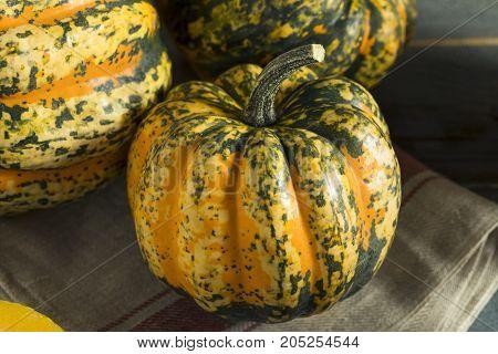 Raw Orange Organic Acorn Squash Ready to Cook With