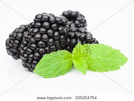 Fresh Healthy Summer Blackberries With Mint Leaf
