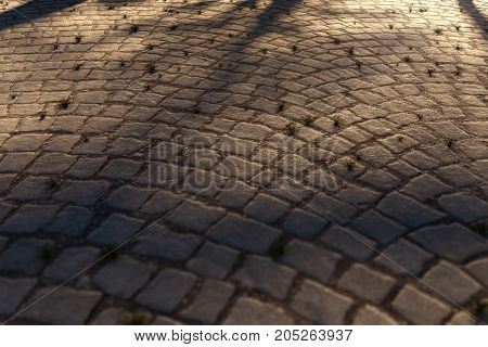 3d rendering of evening sunlight shining on cobblestone street