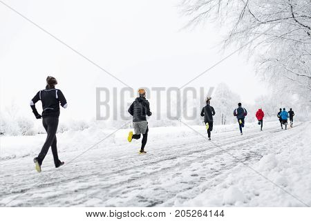 A group young people running together snowy trail in winter Park. rear view
