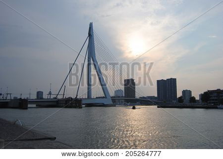 Summer sunset in Rotterdam in the Netherlands.