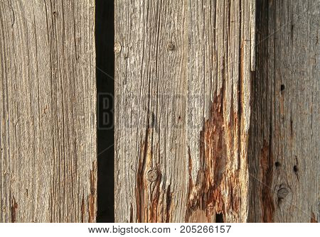 a full frame rundown wooden planks detail
