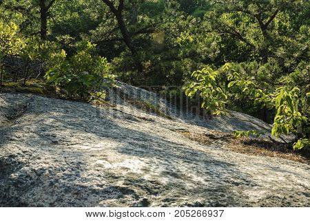 Exposed granite hillside curving toward distant pond