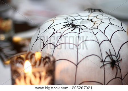 Black spider on a pumpkin decorated with a spider web on halloween