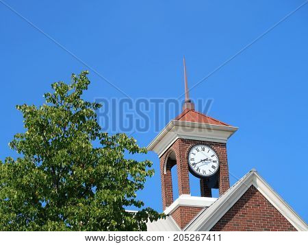 A vivid blue sky, vibrant green treetop, and the clock in the tower together proclaim that it is summertime.