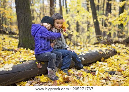 Two children playing in beautiful autumn park on cold sunny fall day.