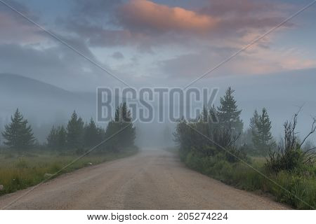 Looking Down Country Lane On Foggy Morning