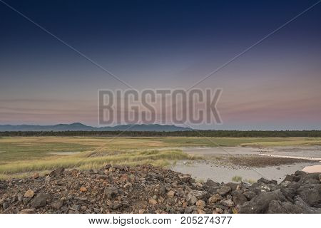 Looking Out Over The Grasslands Of The Columbia River Delta