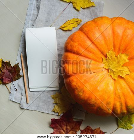 composition of fresh orange pumpkin harvest for thanksgiving day