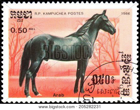 R.P. KAMPUCHEA - CIRCA 1986: A stamp printed in R.P.Kampuchea shows a Arabian Horse, series breeds of horses