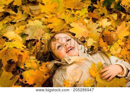 Little child having fun lying in fallen leaves in autumn