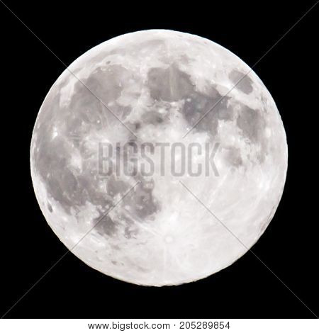 moon on a black background . In a park in the nature