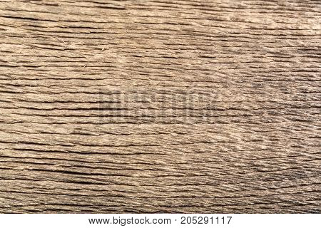 Unique old wood bog oak with fantastic scratch and orange line. High resolution photo.