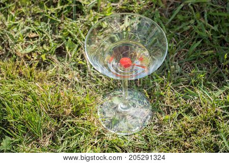Glass goblet with red cherry and champagne or martini on green grass in summer