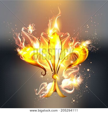 Beautiful vector burn golden fleur de lis