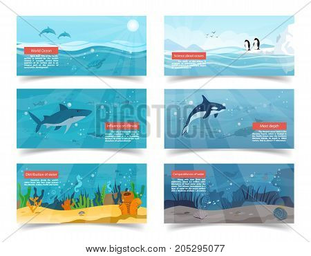 World ocean vector illustrations with scientific information and pictures of bottom, surface, white shark, killer whale and penguins of Antarctica.