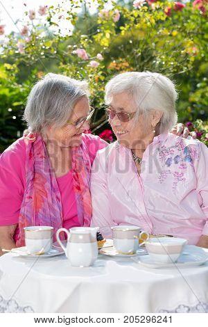 Two Senior Women Talking Over Tea In Garden