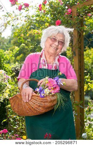 Senior Woman Holding Basket In Garden