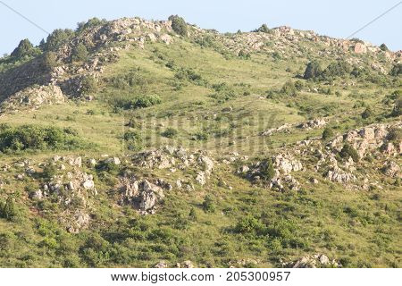 slopes of the mountains in Kazakhstan . . In a park in the nature