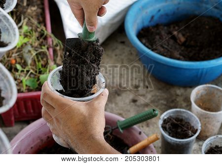 The man put the soil in the glass prepare for plant the young tree.